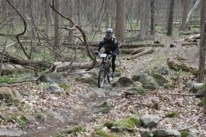 Bendix woods 2